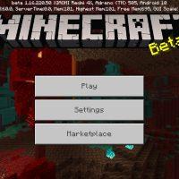 Minecraft PE 1.16.220.50