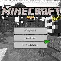 Minecraft PE 1.16.210.60