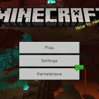 Minecraft PE 1.16.221