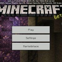 Minecraft PE 1.17.10.22