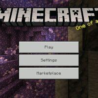 Minecraft 1.17.10